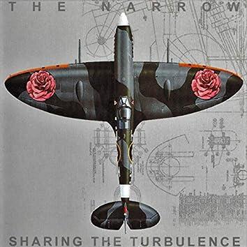 Sharing the Turbulance