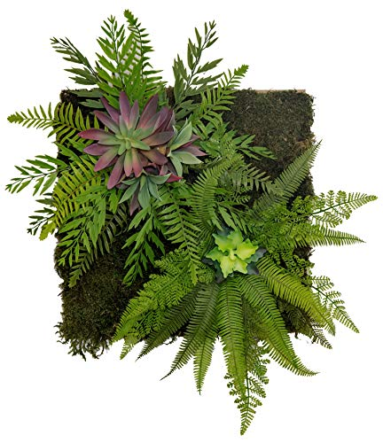 Maia Shop Jardín Vertical, Ideal para Decoración del Hogar u Oficina, Diseño de Espacios, Árbol, Flor, Planta Artificial (42 x 42 cm)
