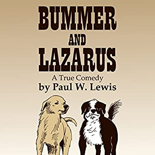 Bummer and Lazarus: A True Comedy audiobook cover art