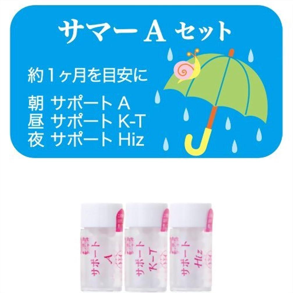 演じる忍耐ニッケルホメオパシージャパンレメディー サマーAセット