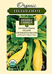 SOW & GROW your own home garden with these organic summer squash seeds that flourish in soil. Bring ingredients to the kitchen that are as fresh as can be. Non-GMO & free of chemicals & pesticides. VEGETABLE GARDEN: Hone your green thumb for these or...