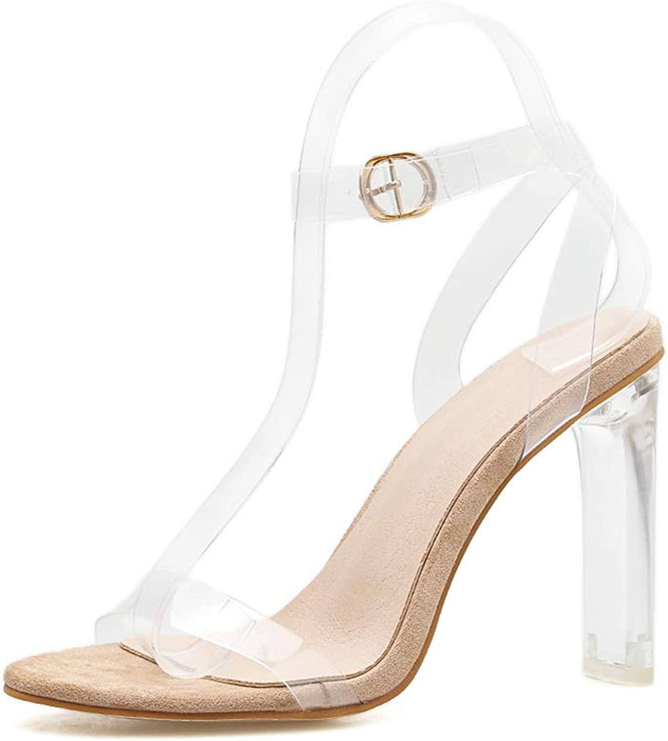 Women's Clear Open Toe High Heels Ankle Strap Adjustable Buckle Block Chunky Perspex High Heel Transparent Dress Sandals,Apricot,39