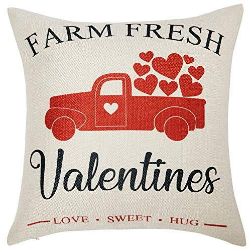 Farm fresh Valentine pillow.