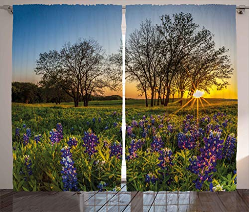 """Ambesonne Nature Curtains, Country Scenery with Lavender Meadow at Sunset Spring Beauty Foliage Eco Picture, Living Room Bedroom Window Drapes 2 Panel Set, 108"""" X 84"""", Lavender Green"""
