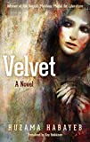 Velvet: A Novel (Hoopoe Fiction)