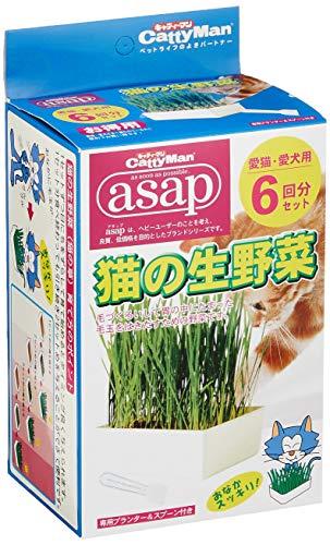 キャティーマン asap 猫の生野菜 6回分セット
