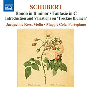 Schubert: Complete Works for Violin and Fortepiano, Vol. 2
