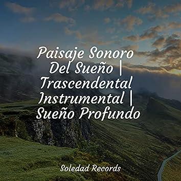 Paisaje Sonoro Del Sueño   Trascendental Instrumental   Sueño Profundo