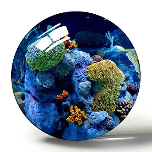 Usa America Gatlinburg Ripleys Aquarium der Smokies 3D-Kühlschrankmagnet-Souvenir-Kollektion Reisegeschenkkreis Kristall-Kühlschrankmagnete