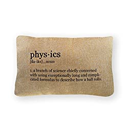 gifts for physics geeks - pillow cover