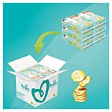 Pampers Premium Protection Windeln, Gr.2, 4-8kg, Monatsbox, 1er Pack (1 x 240 Stück) - 3