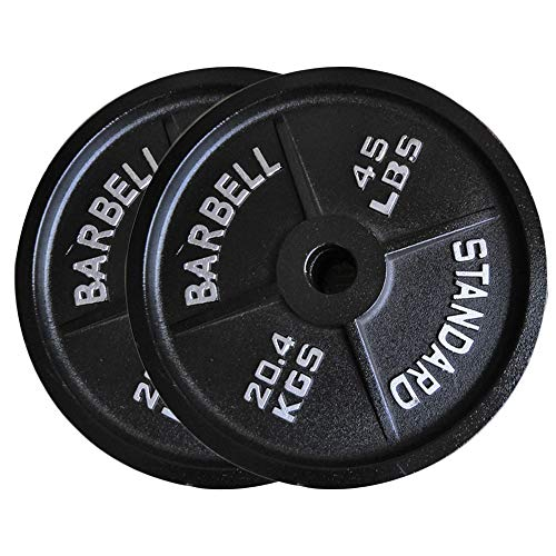 Bumper Plate Olympic Weight Plates Cast Iron Dumbbell Accessories Perfect for Bodybuilding WeightLifting Home Gym-2.5lb,5lb,10lb,25lb,35lb,45lb,25LB
