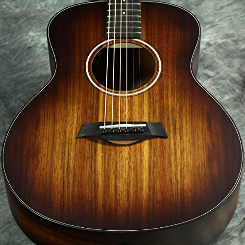 Taylor『GS Mini-e Koa Plus』