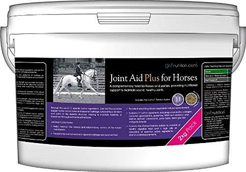 GWF Nutrition Joint Aid Plus per Cavalli–2kg Vasca