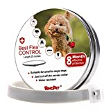 BINGPET Flea and Tick Collar Prevention for Dogs - 8 Month Dog Flea