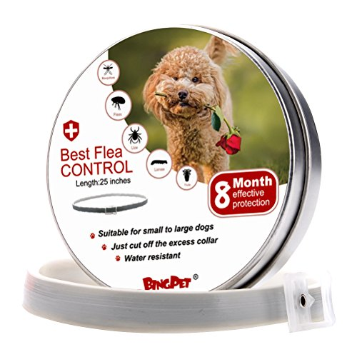 BINGPET Flea and Tick Collar Prevention for Dogs - 8...