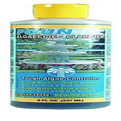 EasyCare FounTec Algaecide and Clarifier, 8 oz. Bottle
