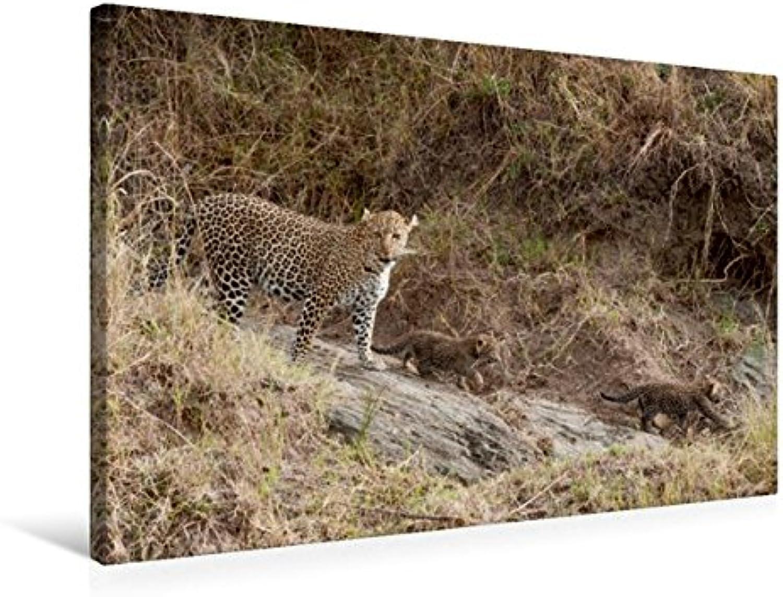 Calvendo Premium Textil-Leinwand 75 cm x 50 cm quer, EIN Motiv aus dem Kalender Emotionale Momente  Leoparden   Wandbild, Bild auf Keilrahmen, Fertigbild auf Leopardenmama mit Babys Tiere Tiere