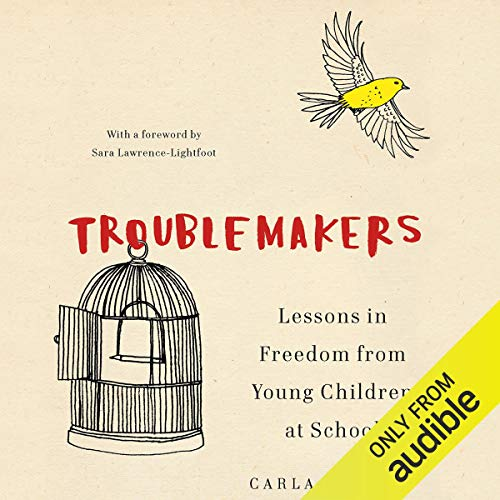 Troublemakers audiobook cover art