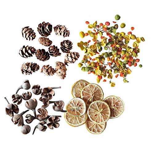 iSuperb Natural Flor Seca Para Jabon y Vela Para Todo Tipo de Manualidades DIY Dried Flower (Fruta)