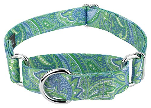 Country Brook Petz - Martingale Dog Collar - Five Paisley Collection (Green Paisley, 1 Inch, Medium)