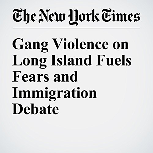 Gang Violence on Long Island Fuels Fears and Immigration Debate audiobook cover art