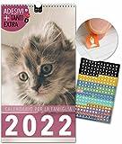 Calendario per famiglie 2022 | 23x43cm | 5 Colonne | 228 adesivi | GATTI | Planner da parete, Planner da muro | Tutti i giorni festivi | Belle foto di gatti, Decorazione, Design, Animali, Carino