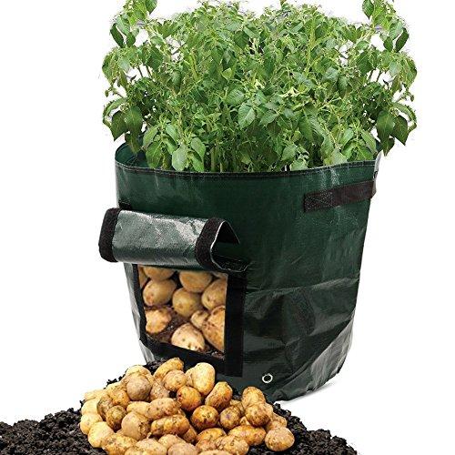 Sac de plantation de pommes de terre OPP Sacs de plantation de légumes Sacs de culture avec rabat d'accès pour la récolte