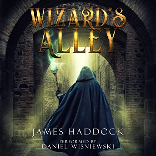 Wizard's Alley Audiobook By James Haddock cover art