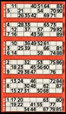 600 Bingo Tickets - Pad of Red 6 to View Flyers -