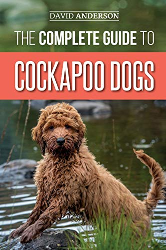 The Complete Guide to Cockapoo Dogs: Everything You Need to Know to Successfully Raise, Train, and Love Your New Cockapoo Dog