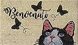 Zerbino da Esterno in Cocco con Base in PVC Dipinto a Mano Raffigurante Gatto e Farfalle con Scritta Benvenuti 70X40X2 cm. Facile da Pulire e Ultraresistente