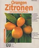 Orangen, Zitronen und andere Citruspflanzen. So gedeihen sie am besten im Zimmer, im Wintergarten, auf Balkon und Terrasse