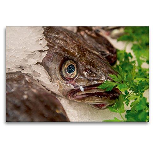 Premium Textil-Leinwand 120 x 80 cm Quer-Format Hechtdorsch | Wandbild, HD-Bild auf Keilrahmen, Fertigbild auf hochwertigem Vlies, Leinwanddruck von Ingo Gerlach