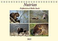 Nutrias Peissnitzinsel Halle Saale (Tischkalender 2022 DIN A5 quer): Die Nutria in freier Wildbahn auf der Peissnitzinsel Halle Saale (Monatskalender, 14 Seiten )