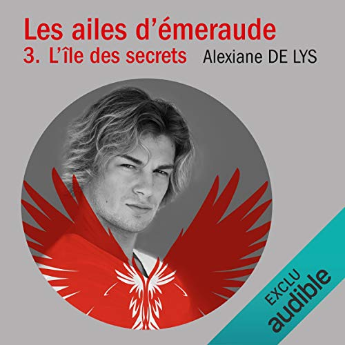 L'île aux secrets audiobook cover art