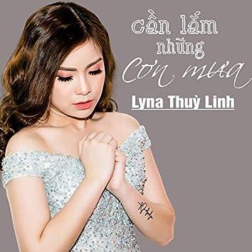 Can Lam Nhung Con Mua