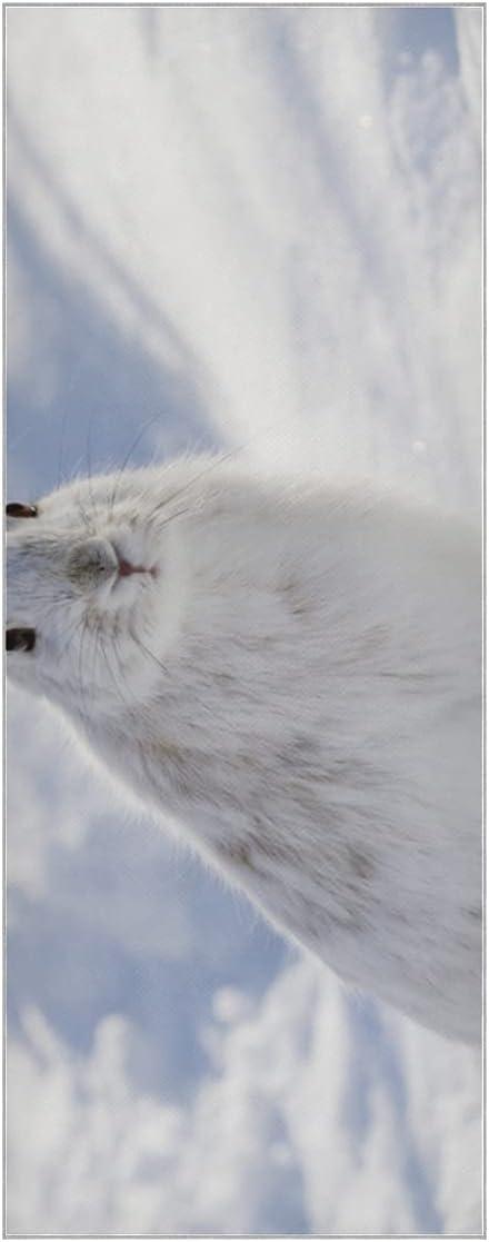 Yoga Towels White Snow Hare Ranking TOP9 Rabbit Winter Milwaukee Mall Mat in Slip Su No