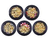 Minkissy 5 Piezas de Clavos de Metal Clavos de Oro Luna Remaches de Uñas Cristales de Uñas Decoraciones de Joyería de Uñas Kit de Manicura (Patrón Aleatorio)