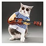 DELIFUR Cat Apparel