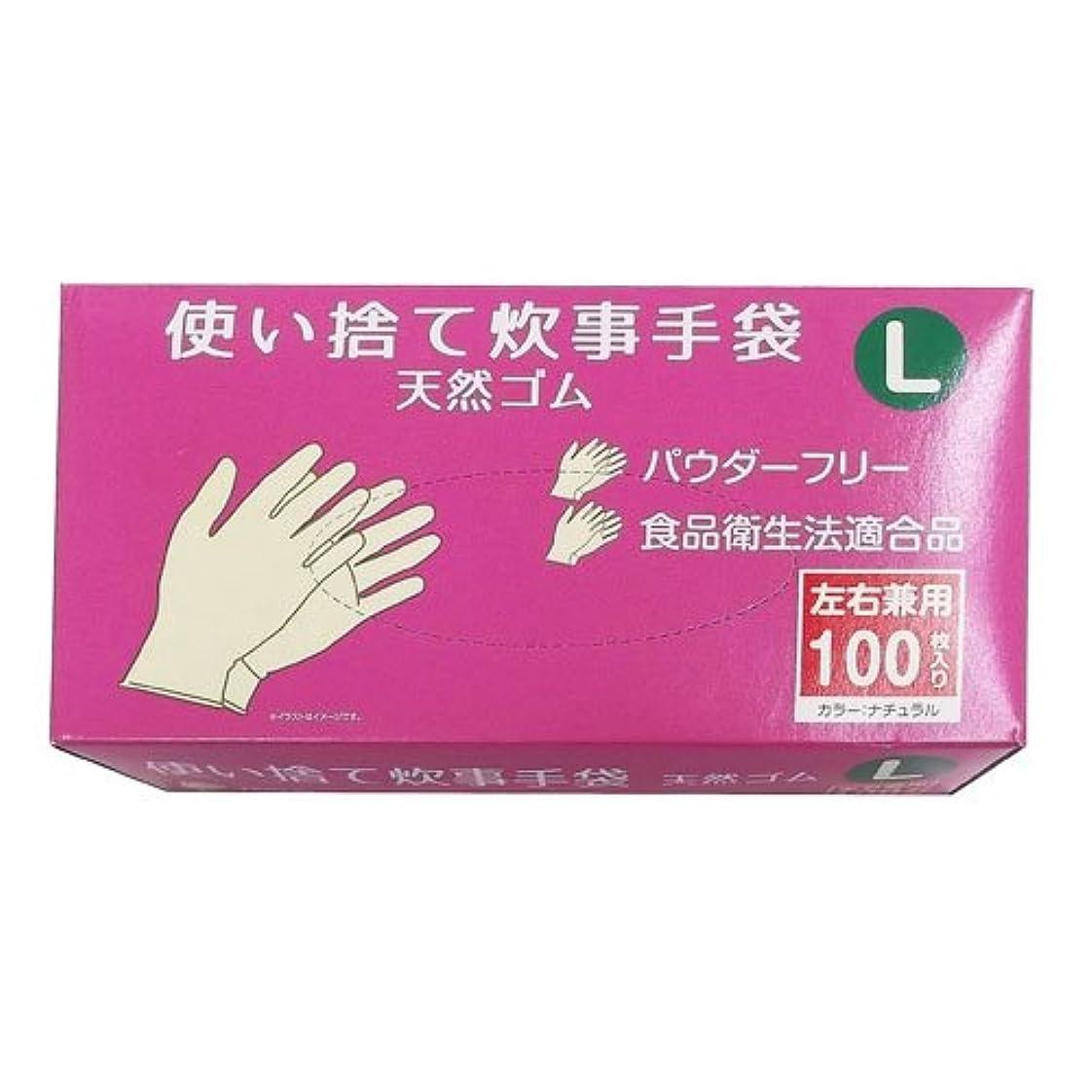 効果的ゴシップ日光コーナンオリジナル 使い捨て 炊事手袋 天然ゴム 100枚入り L