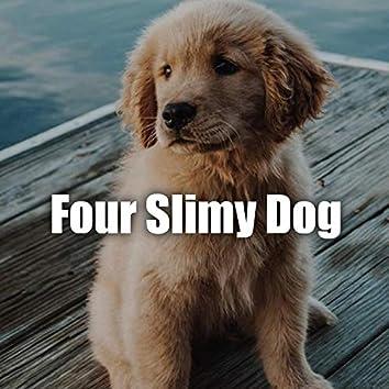 Four slimy dog