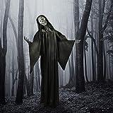 Haunted Hill Farm HHRPR-5FLSA Life-Size Animatronic Reaper, Indoor/Outdoor Halloween Decoration, Multi