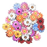 Botones de Madera 50 Piezas Botones Madera de Crisantemo Coloridos Aleatorio 2 Agujeros Crisantemo Botones para Decoración Coser Manualidades Scrapbooking Accesorios Costura Adornos Botones 25mm