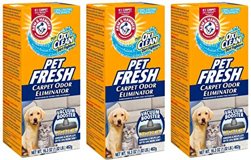Best Carpet Deodorizer For Pets