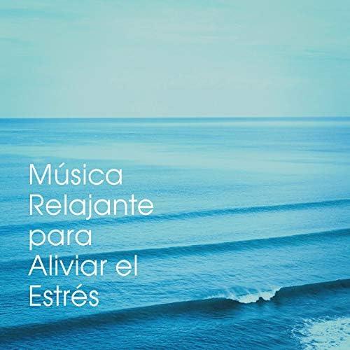 Música a Relajarse, Musica Relajante, Musica de Relajación Academy