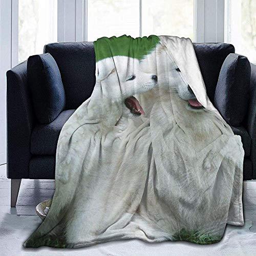 DWgatan Couverture,Jeté de lit Super Chaud en Polaire Easy Care,100% Polyester léger canapé Confort Enfants, Chambre à Coucher,Dog Printed Blanket for Bedroom Living Room Couch Bed Sofa -50\