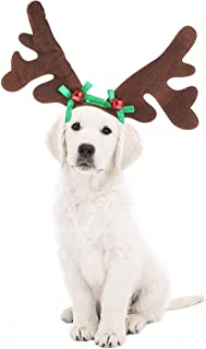 Best reindeer horns for dogs Reviews
