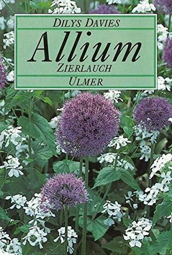 Allium, Zierlauch