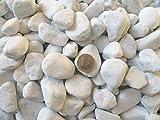 Xabian 5kg Dekosteine weiß 25-40mm wählbar auch 1kg - 10kg - 20kg - 2